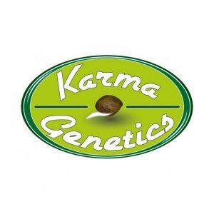 Karma Genetics | Headbanger [Sour Diesel x Biker Kush V1]