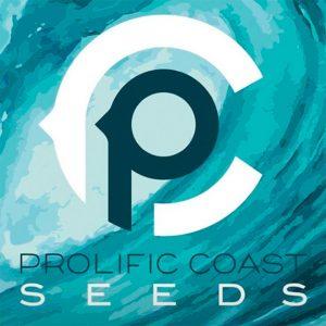 Prolific Coast Seeds | Cake Bomb Regular Seeds