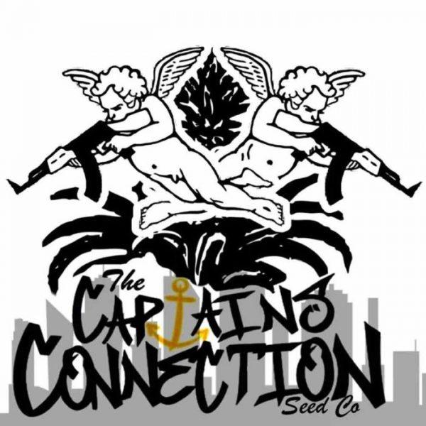 captains connection logo