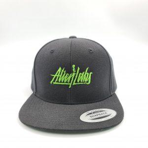 AlienLabs | Snapback Cap